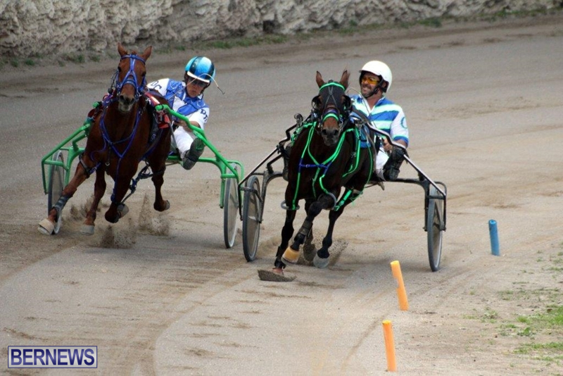Bermuda-Harness-Pony-Racing-10-Mar-13