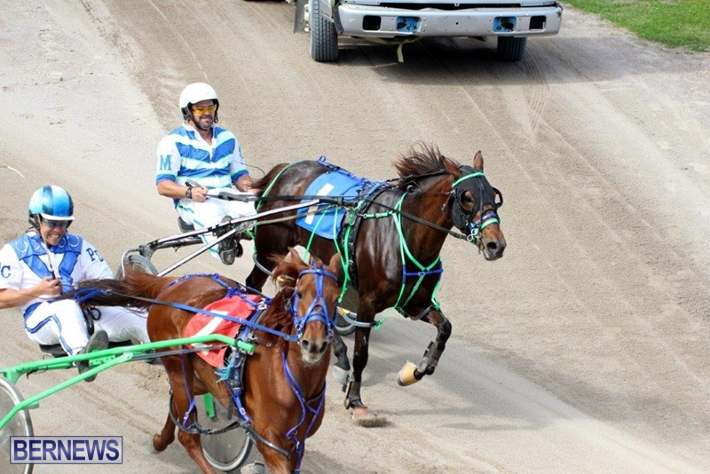 Bermuda-Harness-Pony-Racing-10-Mar-14