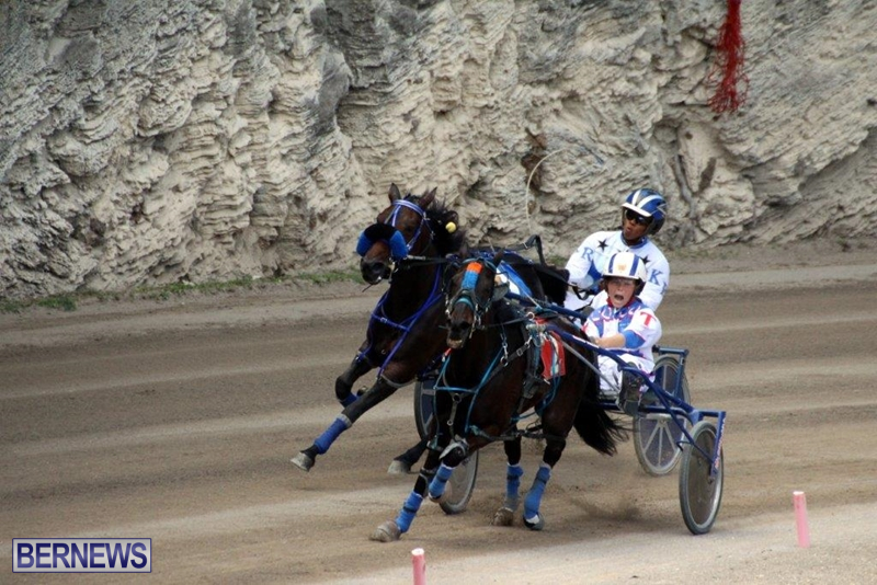 Bermuda-Harness-Pony-Racing-10-Mar-18
