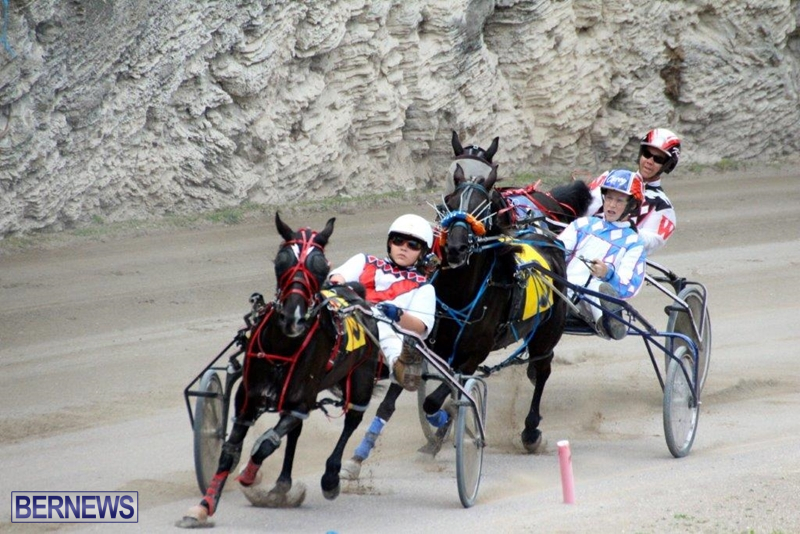 Bermuda-Harness-Pony-Racing-10-Mar-3