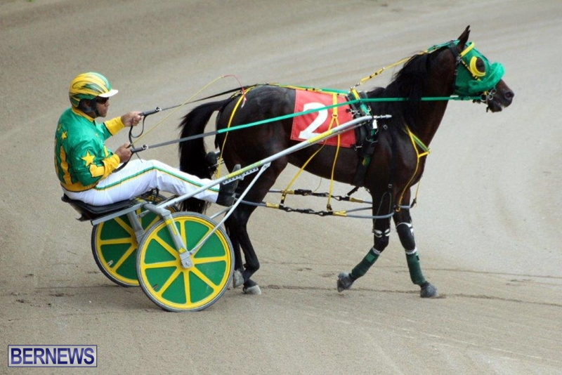 Bermuda-Harness-Pony-Racing-10-Mar-7