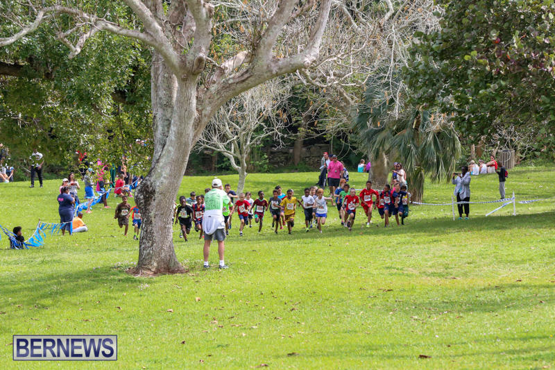 KPMG-Round-The-Grounds-Bermuda-March-20-2016-131