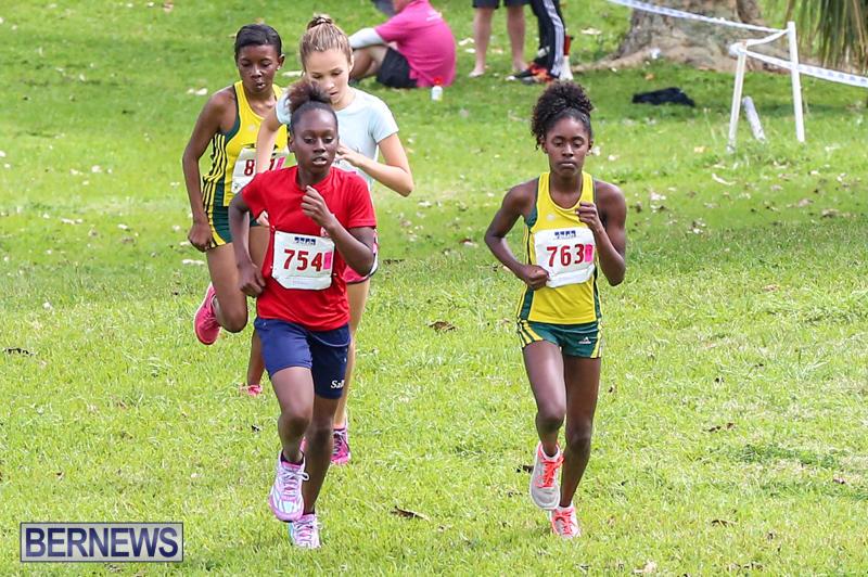 KPMG-Round-The-Grounds-Bermuda-March-20-2016-161