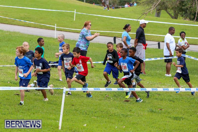 KPMG-Round-The-Grounds-Bermuda-March-20-2016-3