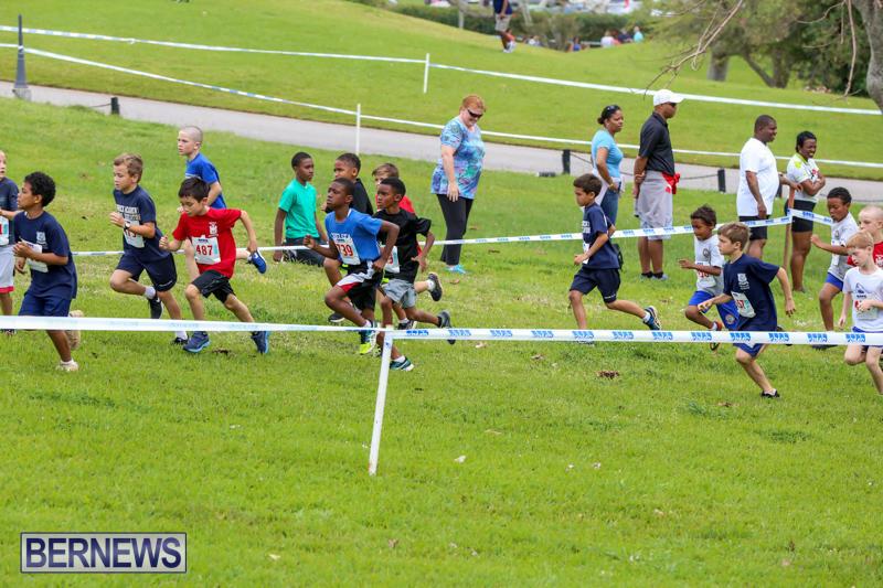 KPMG-Round-The-Grounds-Bermuda-March-20-2016-4