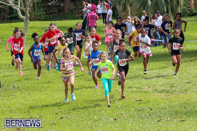 KPMG-Round-The-Grounds-Bermuda-March-20-2016-69