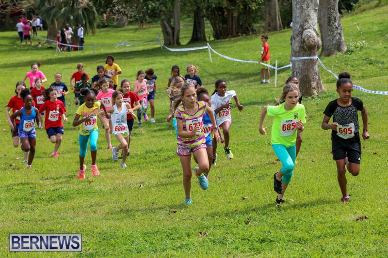 KPMG-Round-The-Grounds-Bermuda-March-20-2016-74