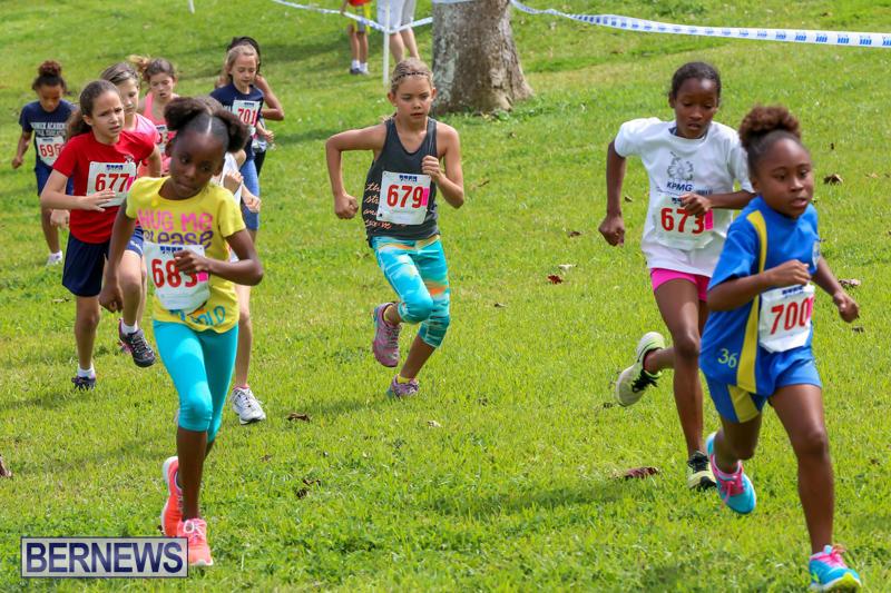 KPMG-Round-The-Grounds-Bermuda-March-20-2016-76
