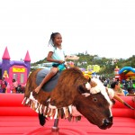 PHC Community Fun Day Bermuda, March 25 2016-146