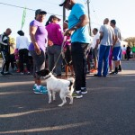 PHC Community Fun Day Bermuda, March 25 2016-20