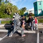 PHC Community Fun Day Bermuda, March 25 2016-33