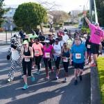 PHC Community Fun Day Bermuda, March 25 2016-66
