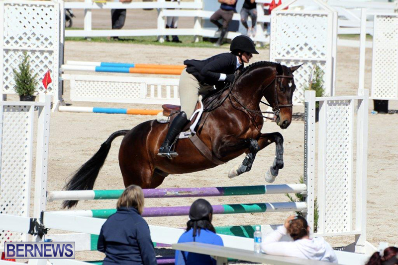 RES-Spring-Show-Bermuda-March-1-2016-14