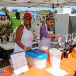 St. David's Cricket Club Good Friday Gilbert Lamb Day Bermuda, March 25 2016-18