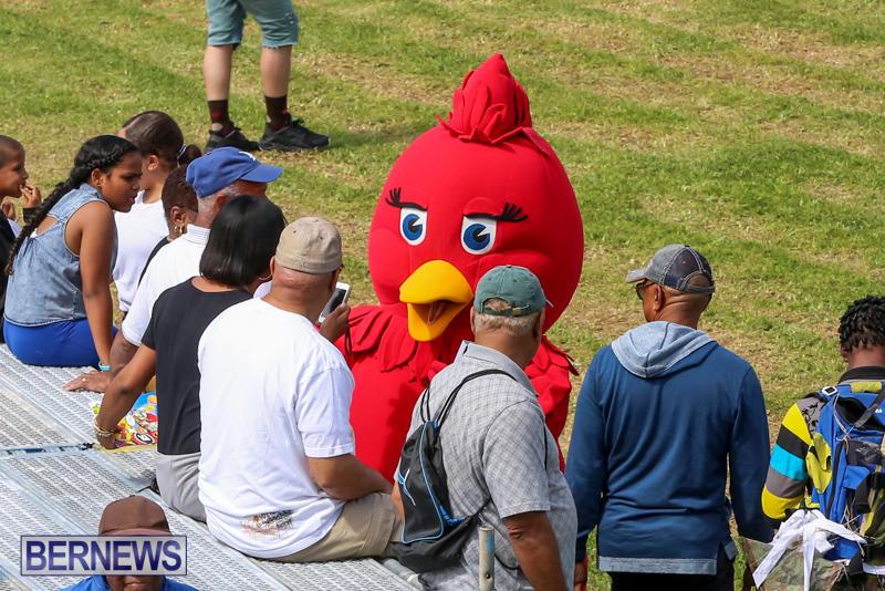 St.-David's-Cricket-Club-Good-Friday-Gilbert-Lamb-Day-Bermuda-March-25-2016-69