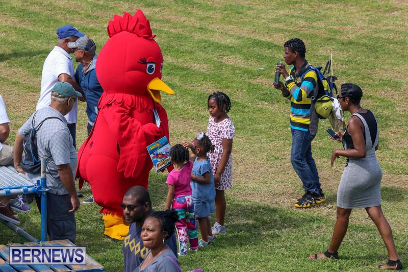 St.-David's-Cricket-Club-Good-Friday-Gilbert-Lamb-Day-Bermuda-March-25-2016-72