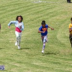 St. David's Cricket Club Good Friday Gilbert Lamb Fun Day Bermuda, March 25 2016-51