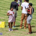 St. David's Cricket Club Good Friday Gilbert Lamb Fun Day Bermuda, March 25 2016-61