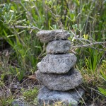rocks at spittal pond bermuda march 2016 (14)