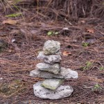 rocks at spittal pond bermuda march 2016 (5)