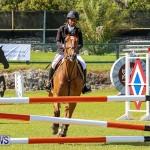 Ag Show Bermuda, April 14 2016-9