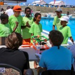 BIOS ROV Challenge Bermuda, April 30 2016-25