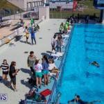 BIOS ROV Challenge Bermuda, April 30 2016-3