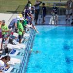 BIOS ROV Challenge Bermuda, April 30 2016-8