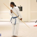 Bermuda Karate Open Championships April 26 2016 (13)