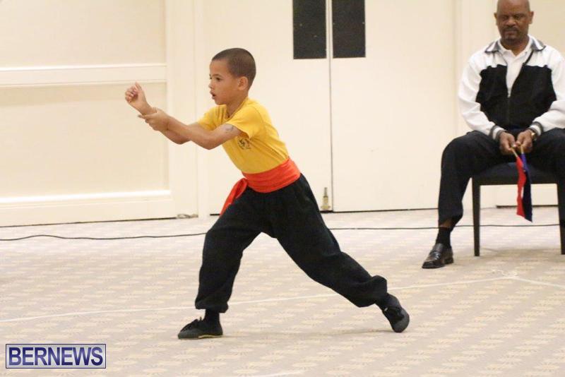 Bermuda-Karate-Open-Championships-April-26-2016-14
