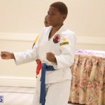 Bermuda Karate Open Championships April 26 2016 (19)