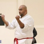 Bermuda Karate Open Championships April 26 2016 (3)