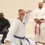 Bermuda Karate Open Championships April 26 2016 (5)