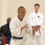 Bermuda Karate Open Championships April 26 2016 (6)
