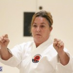 Bermuda Karate Open Championships April 26 2016 (7)
