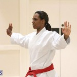 Bermuda Karate Open Championships April 26 2016 (9)