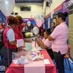 CedarBridge Academy Vocational Career Fair Bermuda, April 22 2016-10
