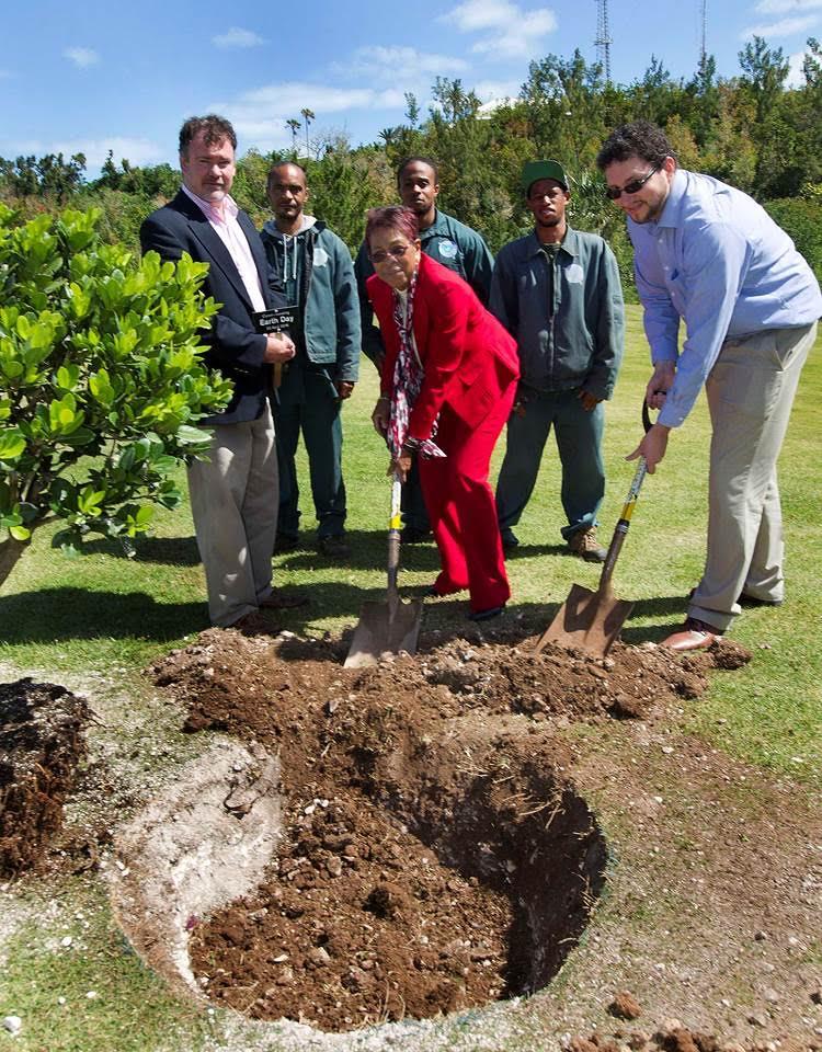 Earth Day Tree Planting Bermuda April 22 2016 (1)
