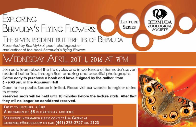 Flying Flowers Apr 08