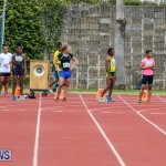 Track & Field Meet Bermuda, April 30 2016-30