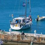ARC Europe ARC USA Rally Bermuda, May 17 2016-21