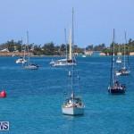 ARC Europe ARC USA Rally Bermuda, May 17 2016-7