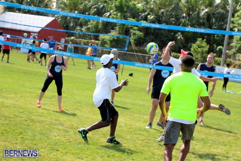 Bermuda-Corporate-Volleyball-Tournament-May-2016-14