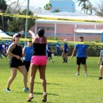 Bermuda Corporate Volleyball Tournament May 2016 (2)