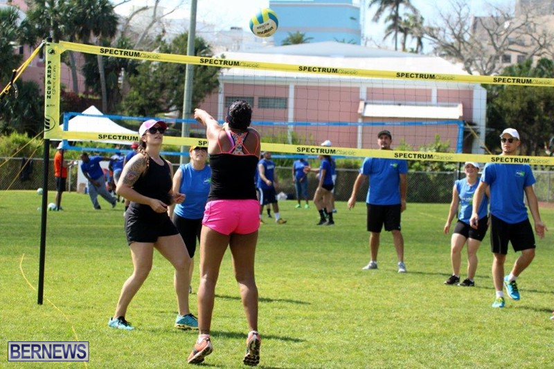 Bermuda-Corporate-Volleyball-Tournament-May-2016-2