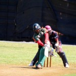Bermuda Cricket Western Stars - Willow Cuts (11)