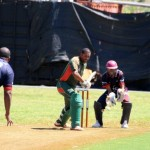 Bermuda Cricket Western Stars - Willow Cuts (12)