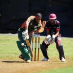 Bermuda Cricket Western Stars - Willow Cuts (13)