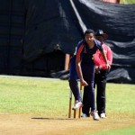 Bermuda Cricket Western Stars - Willow Cuts (14)