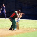 Bermuda Cricket Western Stars - Willow Cuts (17)